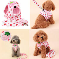 Small Dog Puppy Pet Adjustable Harness Walking Soft Mesh Safety Strap in Walk