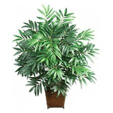 Medium House Plant Tropical Palm Tree Bamboo Indoor Decor Fake Artificial Exotic