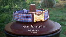 Blue tartan cotton dog collar with black plastic buckle or rose gold buckle