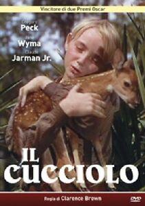 Il Cucciolo DVD A & R PRODUCTIONS