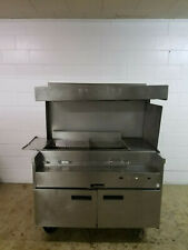 Delfield Custom Fried Food Station 42d Heat Lamp W/Lights 120Volts 1Phase Tested