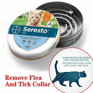 Bayer Seresto Flea Collars For Large Dogs Flea and tick control and treatment
