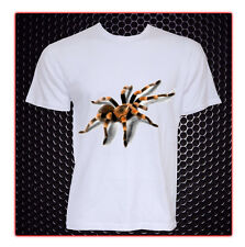Tarantula adult size t shirt all sizes adult small-2xl