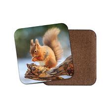Adorable Ginger Squirrel Coaster - Cute Wildlife Wild Animals Woods Gift #12854