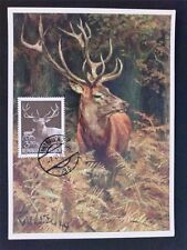 AUSTRIA MK 1959 JAGDWILD HIRSCH DEER WILD MAXIMUMKARTE MAXIMUM CARD MC CM c6504