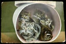 "OLD POSTCARD OF CATS / KITTENS ""KROMO"" SERIES No T 21682"
