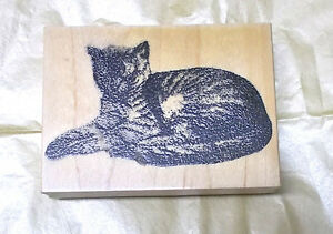 Realistic napping kitty cat rubber stamp wood mounted cats domestic animals pets