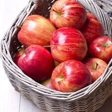 Artificial Fake Fruits Vegetables Plastic Lifelike Fruit Decorative 2020