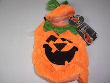 PUMPKIN costume dog new pet Petco halloween XXS XS S M puppy cat Bootique