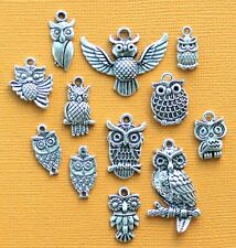 Owl Charm Collection 12 Tibetan Silver Tone Charms FREE Shipping E4