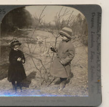 Little Children in Coats by the Brook Pussy Willows Keystone Stereoview c1900