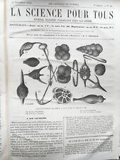 1864 - La SCIENCE pour tous, journal illustré - 4467