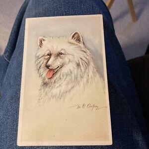 Samoyed Dog Portrait, artist signed