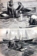 Nova Scotia Canada 1873 ATLANTIC STEAMSHIP WRECK Fishermen Rowboats Engraving