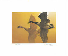 OHIO #8 1989 STATE DUCK STAMP PRINT CANADA GOOSE by Lynn Katz Edition size:550