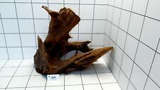 XL Mangrove 805 Aquarium Wood Root Bogwood For Vivarium Fish Tank Aquascaping