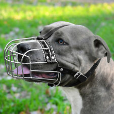 Dog Muzzle PitBull AmStuff Pit Bull Adjustable Metal Wire Basket Leather Straps