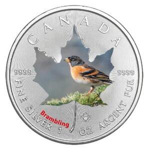 Kanada - 5 Dollar 2017 - Maple Leaf - Brambling (4.) - 1 Oz Silber ST