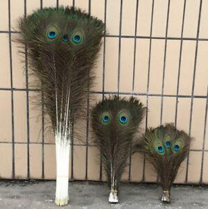 Wholesale 10-100PCS 25-100cm/10-40inch Long Natural Color Peacock Feathers DIY