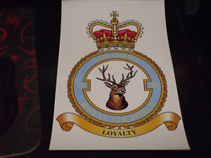 THE ROYAL AIR FORCE SQUADRON 33 CREST STICKER 7X5 INCH..