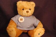 4604720a4502 Noah's Ark Rainbow Star Dressed Plush Bear Lovey WT 11