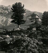 ALLEMAGNE c. 1900 - Stéréo Hönigshaus auf dem Schachen - 69