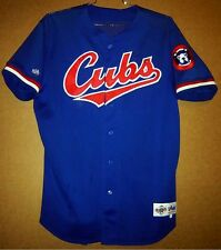 Chicago Cubs Billy Williams Game Worn Mlb Jersey