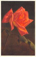 2116 Rose [deep peach] Unused Edition Kessler - Switzerland - Vintage  POSTCARD