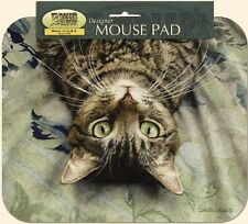 MOUSE PAD--peculiar Perspective CAT--Printed in the U.S.A.--Polyester/Neoprene