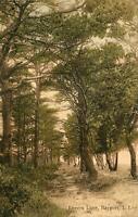 1915 LOVER'S LANE*BAYPORT LONG ISLAND NEW YORK*TO MIDDLE VILLAGE*HIRSCH*POSTCARD