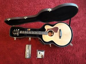 Gibson Parlor Rosewood AG Westerngitarre