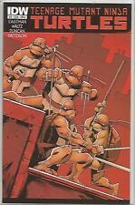 Teenage Mutant Ninja Turtles #12 Cover A (July 2012) IDW Comics High Grade