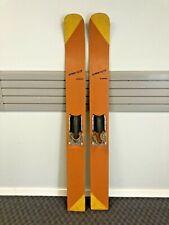 Vintage WOOD WATER SKIS Pair wall art cabin decor waterskis loft hanging orange