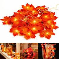 Fall Thanksgiving Maple Leaves LED Light Lamp Garland Festival Decor Charming