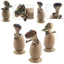 3Pcs Hatching Jurassic World Park Dinosaur Egg Kids Toys Action Figure Xmas Gift