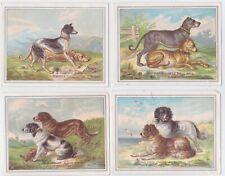 4 1890'S Trade Cards With Elkhound St Bernard & Other Dog Breeds