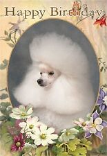 Poodle Dog Design A6 Textured Birthday Card BDPOODLE-8-white-toy by paws2print