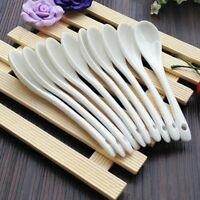1/3PCS Tea Dessert Large/Small Coffee Spoon Procelain Bone Ceramic Pure White