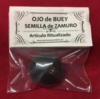 AMULETO SEMILLA DE ZAMURO • OJO DE BUEY • SANTERIA IFA