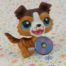 Littlest Pet Shop #237 brown caramel Collie open mouth magnetic disc Talent Show