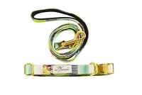 Green Floral Stylish Pet Dog Cat Collar And Leash Set Polyester Gold Hardware