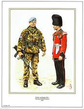 Current Militaria (1991-Now)