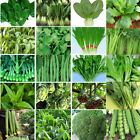 Heirloom Garden vegetable seed Non-GMO seeds bank survival organic plant Variety
