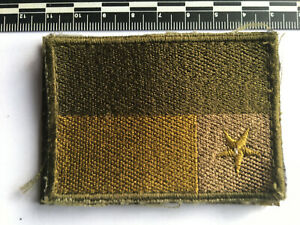 Military Tactical Recognition Flash (TRF), Cloth VGC (687)