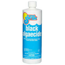 In the Swim Black Algaecide Swimming Pool Chemical - 1 Qt.
