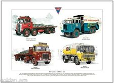 AEC LORRIES 1950s & 60s Fine Art Print A3 size - Mammouth Major Militant Mercury