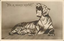 """Postcard Tiger Yawning """" It's A Weary World """" Real photo posted 1932"""