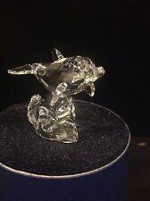 Swarovski Retired Baby Dolphin 678507