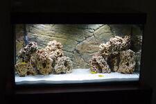 15 Kg Red Limestone Ocean Rock for Malawi Cichlid Aquarium Fish Tank Stones