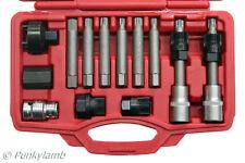 13 Pc Bosch Type Alternator Pulley Car Garage Tool Bit Kit Hex Spline Star Bits